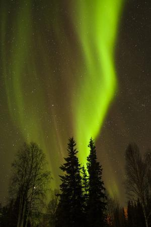 View of Northern Lights and Stars, Chena Hot Springs, Alaska, USA