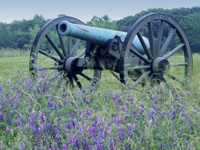 Artillery Cannon, Petersburg National Battlefield Park, Virginia, USA