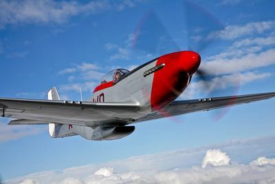 A P-51D Mustang in Flight Near Hollister, California