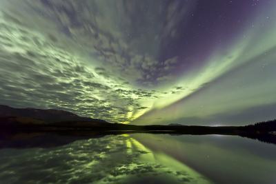 Aurora Borealis over Schwatka Lake, Yukon, Canada