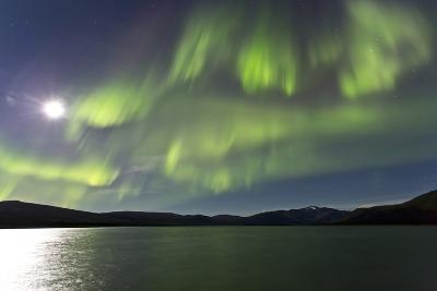 Aurora Borealis over Fish Lake, Yukon, Canada