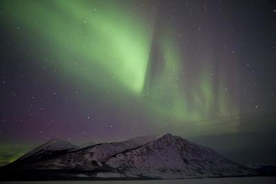 Aurora Borealis over Mountain Range, Carcross, Yukon, Canada