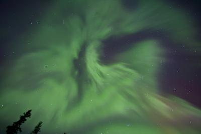 Aurora Borealis in Clear Skies, Yukon, Canda