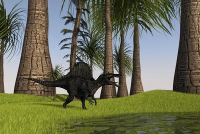 Spinosaurus Hunting Along the Edge of a Swamp