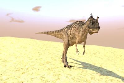 Ceratosaurus Hunting in a Barren Desert