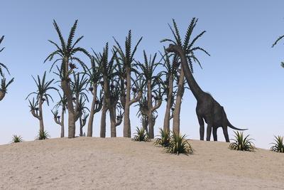 Large Brachiosaurus Grazing on an Island