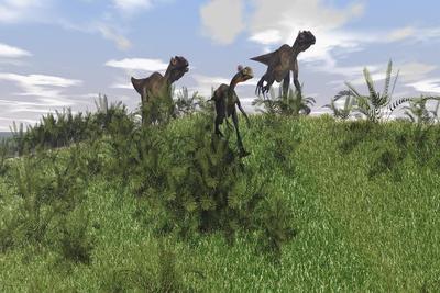 Two Utahraptors Chasing a Gigantoraptor across a Grassy Field