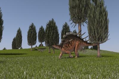 Kentrosaurus and a Coelophysis Walking across an Open Field