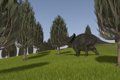 Triceratops Walking across a Grassy Field