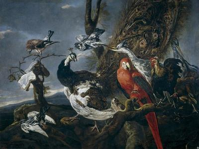 Bird Concert, 1661
