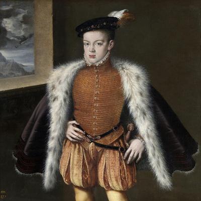 Prince Carlos, 1555-1559