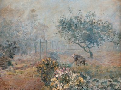 Fog at Voisins
