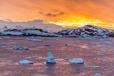 Sunset over Ice Floes and Icebergs, Near Pleneau Island, Antarctica, Southern Ocean, Polar Regions