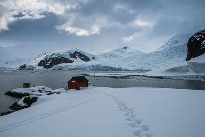 Argentinean Research Station on Danco Island, Antarctica, Polar Regions