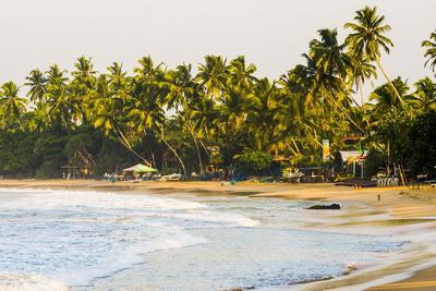Mirissa Beach at Sunset, South Coast, Southern Province, Sri Lanka, Asia
