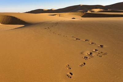 Tourist on Sand Dunes Near Swakopmund, Dorob National Park, Namibia, Africa