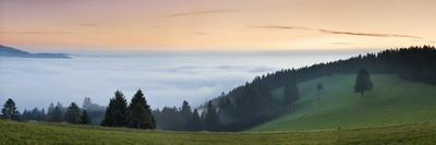 Sea of Fog, View from Schauinsland Mountain, Black Forest, Baden Wurttemberg, Germany, Europe