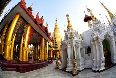 Fisheye Image of Temples and Shrines at Shwedagon Paya (Pagoda)