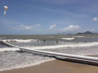 People Swimming Within Stinger Protection Net at Palm Cove