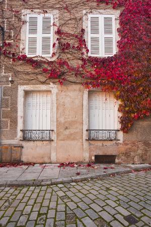 Autumn Leaves in Noyers-Sur-Serein