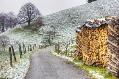 Winding Road and Wood Pile Near St. Trudpert Monastery