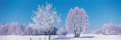 Winter Scenic Germany