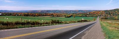 Road Passing Through a Field, Finger Lakes, New York State, USA