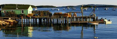 Lobster Traps on a Dock, Stonington, Hancock County, Maine, USA