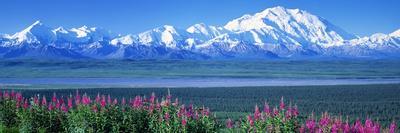 Mountains and Lake Denali National Park Ak USA