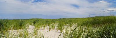 Sand Dunes at Crane Beach, Ipswich, Essex County, Massachusetts, USA