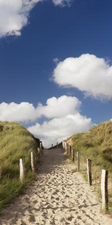 Path Through a Dune, Sylt, Schleswig-Holstein, Germany