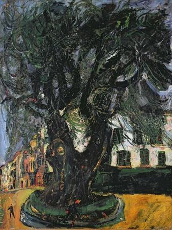 The Tree at Vence, 1929