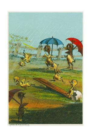 Ducklings in the Rain