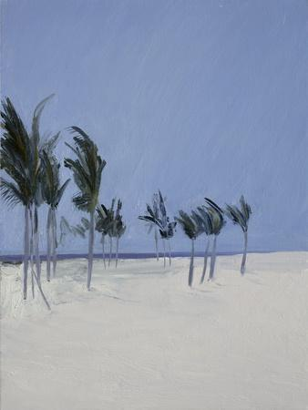 Cable Beach, 2008