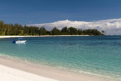 Denis Island, Seychelles, Indian Ocean, Africa