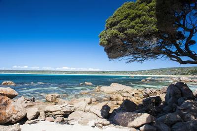 Rocky Cliffs on Shelley Cove Near Eagle Bay, Western Australia, Australia, Pacific