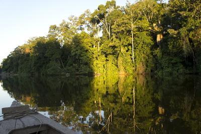 Tourist Boat on Lake Salvador, Manu National Park, Peru, South America