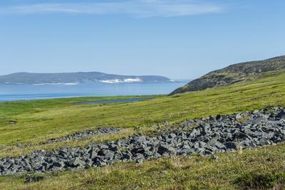 Ittygran Island, Chukotka, Russia, Eurasia