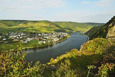 View of Ellenz-Poltersdorf and Moselle River (Mosel), Rhineland-Palatinate, Germany, Europe