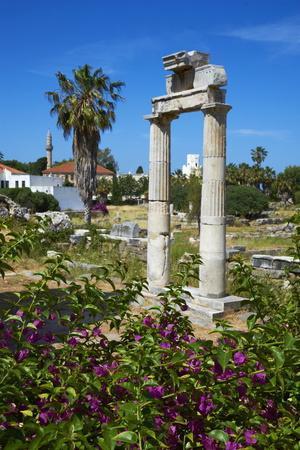 Agora, Kos City, Kos, Dodecanese, Greek Islands, Greece, Europe