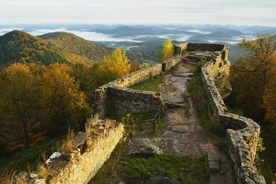 Wegelnburg Castle, Palatinate Forest, Rhineland-Palatinate, Germany, Europe