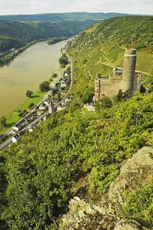 Castle Maus and River Rhine, Rhineland-Palatinate, Germany, Europe