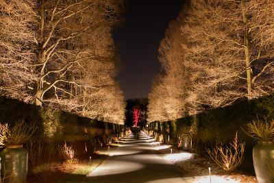 Longwood Gardens, in Pennsylvania, Showcases its Annual Holiday Lights and Decorations