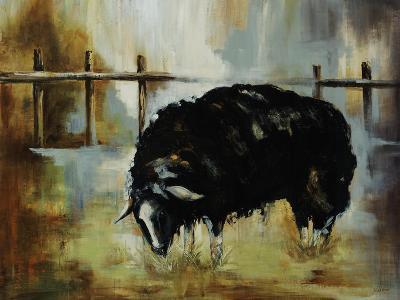 Black Ewe