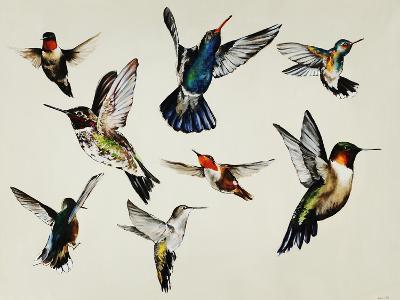 Bevy of Birds
