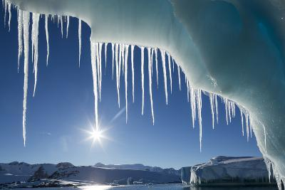 Icicles hang from melting iceberg, Petermann Island, Antarctica.