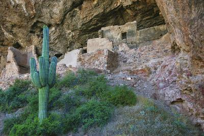 USA, Arizona. Entrance to native American cliff dwelling ruins.