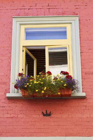 Canada, Quebec, Quebec City, Old Town window with flowers.