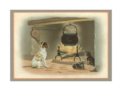 Jack Russell Terrier and Cats