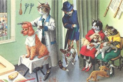 Crazy Cats at the Dog Groomer
